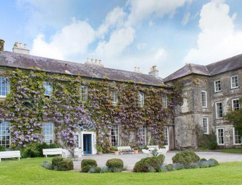 Daphne Spillane, Ballymaloe House